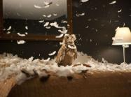 Doug Aitken film still showing an owl in a storm of feathers on a bed in a hotel room