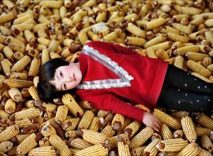 Xiaoxiao Xu photograph of a young chinese girl laying in pile of corn