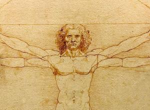 Da Vinci's Vitruvian man from the chest up- a figure of a man with four arms in a circle