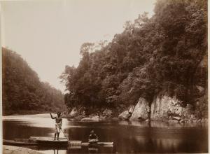 Navua River Scene, Fiji