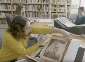cataloguers at work on photography