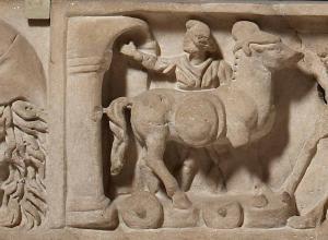 Roman sarcophagus lid