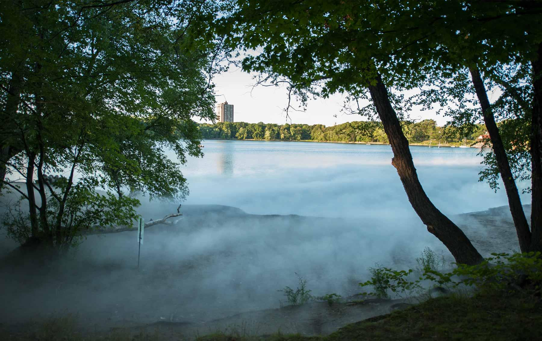 "Jamaica Pond of ""Fog x FLO's Fog x Pond."""
