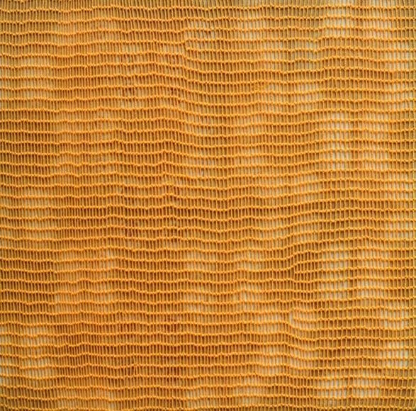Shobha Broota, Untitled (Orange Pattern), 2017