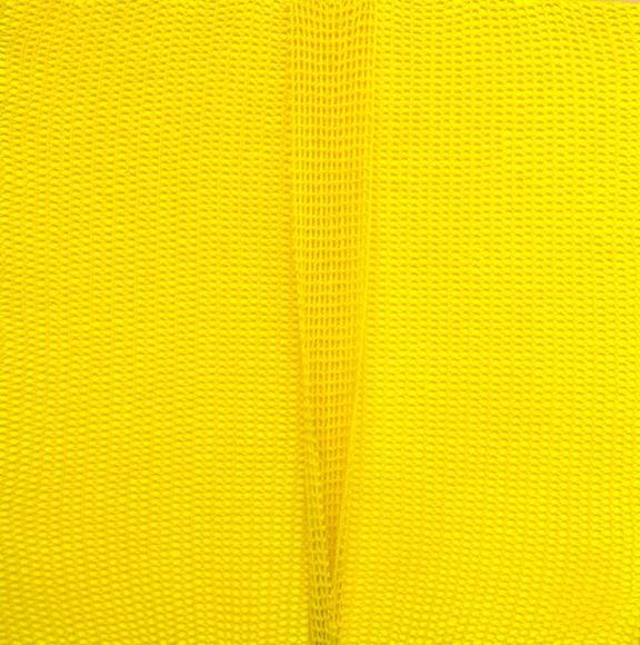 Shobha Broota, Untitled (Yellow), 2017