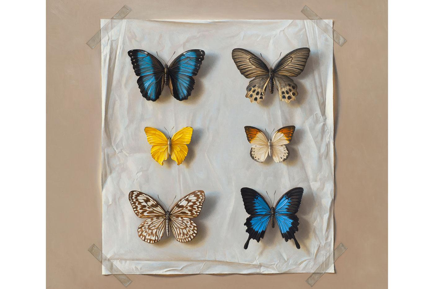 Six Butterflies