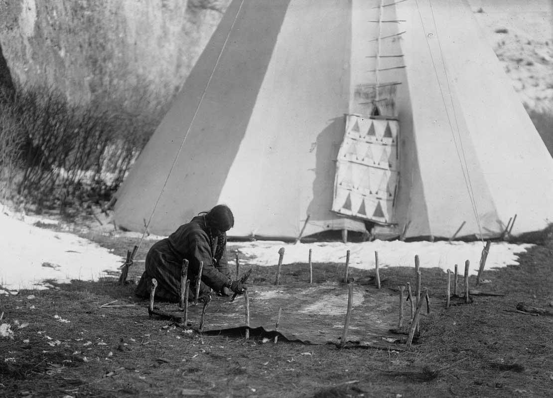 Apsaroke woman scraping hide that is secured to the ground by numerous stakes, tipi in background, 1908.