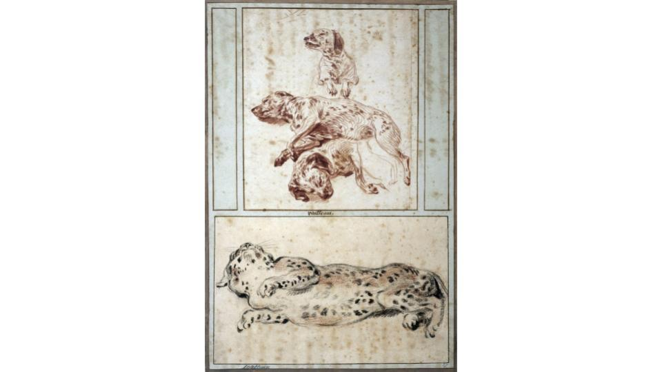 Jean-Antoine Watteau, Three studies of a dog, c. 1717. Cognacq-Jay Museum.
