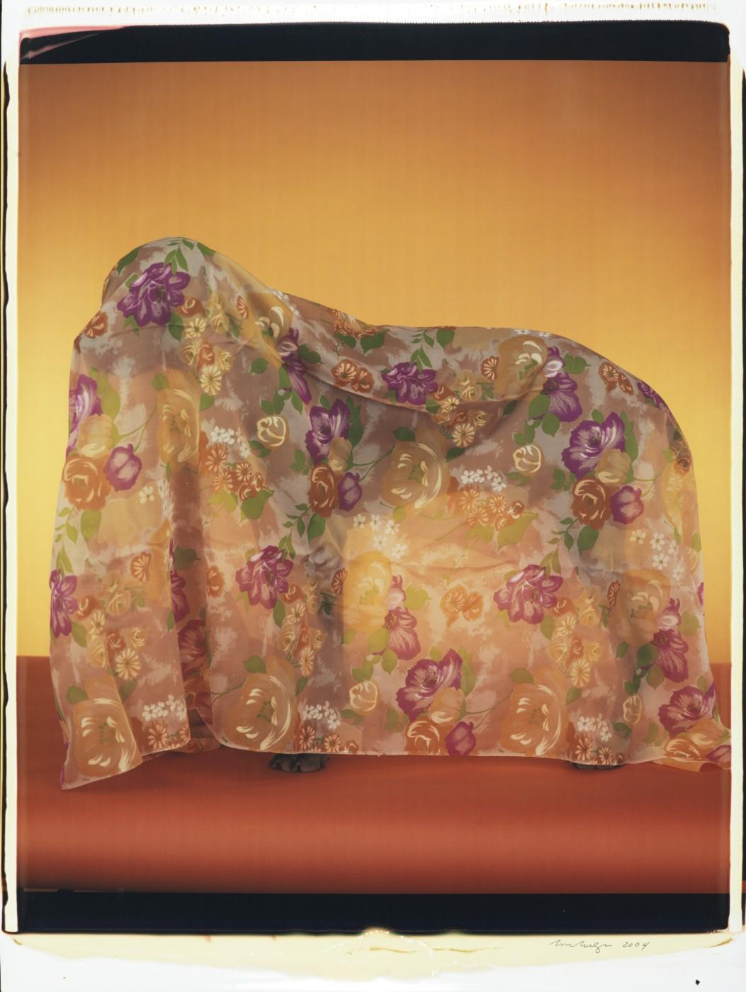 William Wegman, Rain Coat, 2004. Color Polaroid, 24 x 20 in.