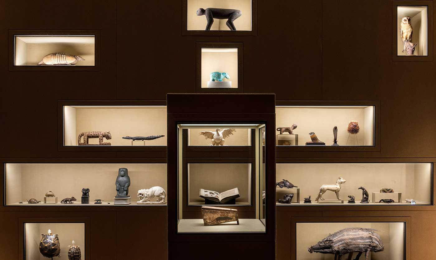 Installation view of Spitzmaus Mummy in a Coffin and other Treasures