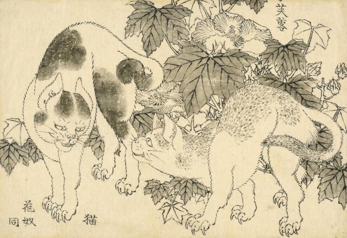 Hokusai print of two cats with hibiscus flowers