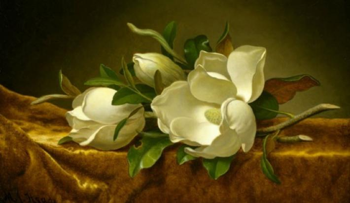 martin johnson headed painting of magnolia blossoms on a gold cloth